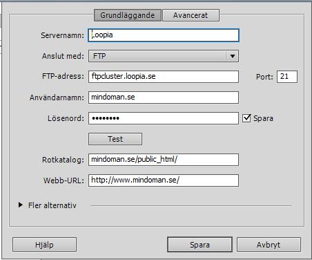 loopia ftp server