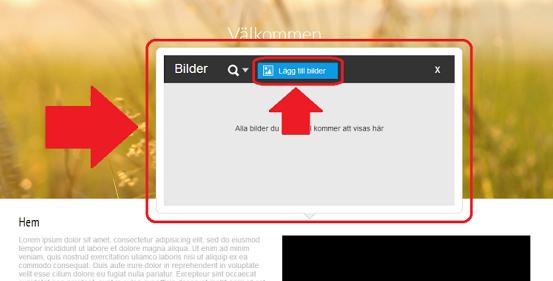 sitebuilder_guide_image_upload_03.png