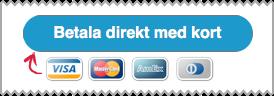 Skärmdump som visar hur det ser ut när du betalar en faktura med ett klick